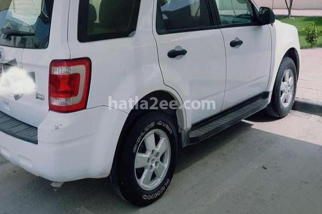 Escape Ford 2010 Doha White 1283148 - Car for sale : Hatla2ee