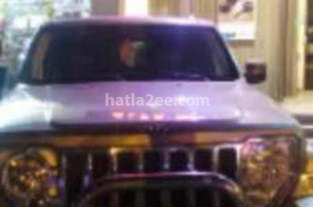 Cherokee Jeep برونزي