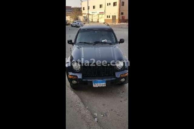 Liberty Jeep 2003 Cairo Black 2352538 Car For Sale Hatla2ee