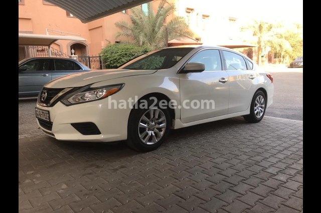 Altima Nissan White