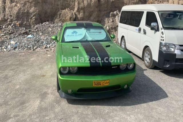 Challenger Dodge أخضر