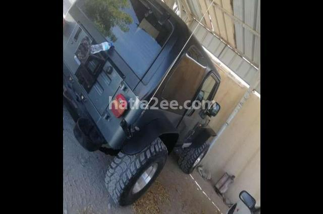 Wrangler Jeep رمادي