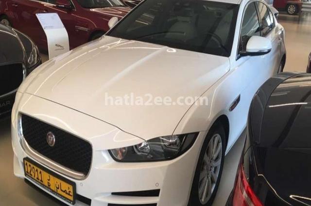 XE Jaguar أبيض