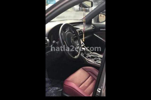 Is Lexus Gray