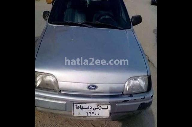 Fiesta Ford فضي