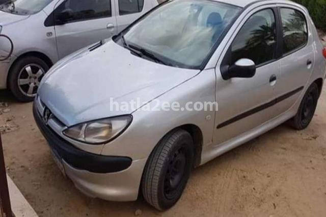 206 Peugeot Silver