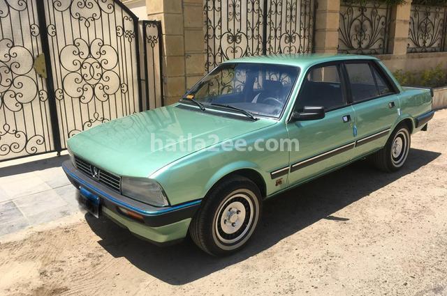505 Peugeot Green