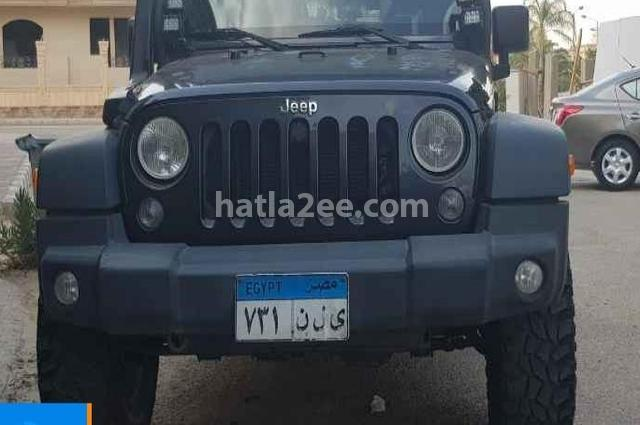 Wrangler Jeep Gray