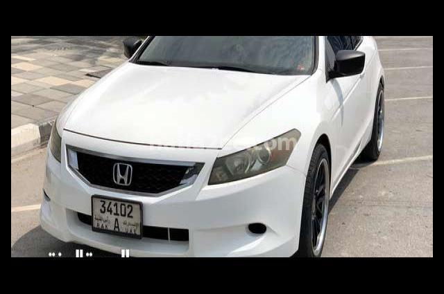 Accord Honda أبيض