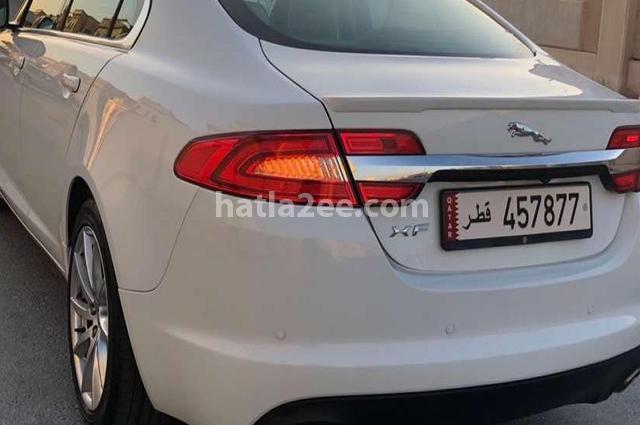 XF Jaguar أبيض