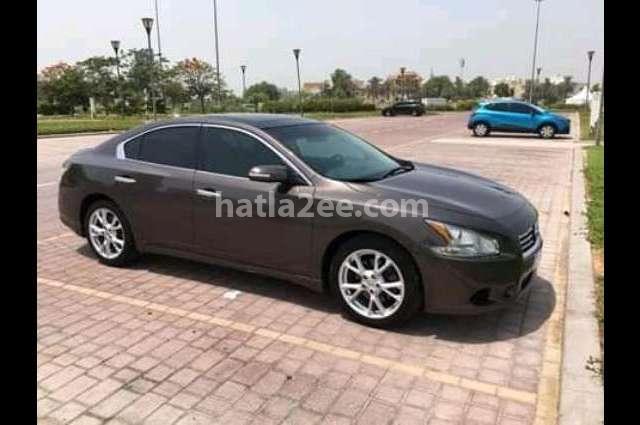 Altima Nissan Bronze
