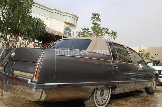 Fleetwood Cadillac Gray