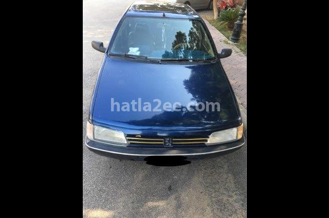 405 Peugeot Blue