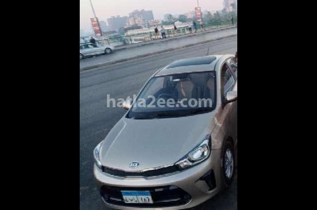 Pegas Kia 2020 Cairo Bronze 2758107 Car For Sale Hatla2ee