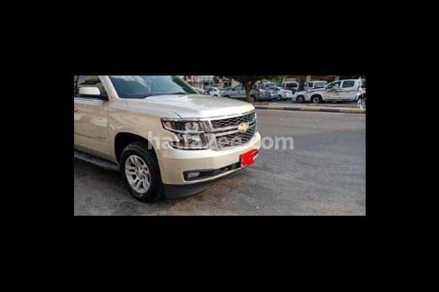 Taho Chevrolet Gold