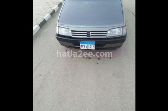 405 Peugeot Gray