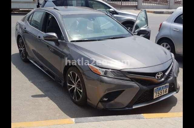Camry Toyota Gray