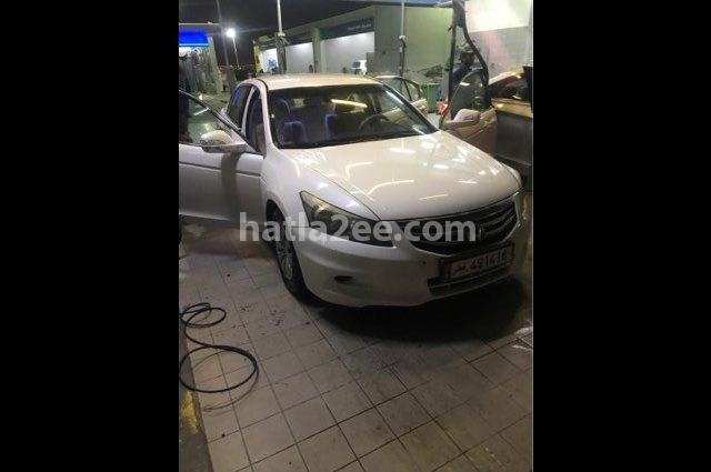 Accord Honda أبيض