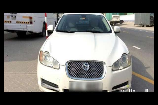 XF Jaguar White