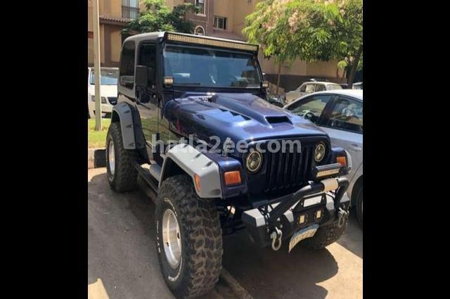 Wrangler Jeep Dark blue