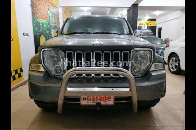 Cherokee Jeep Bronze