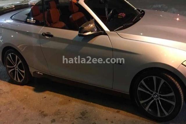 218 BMW فضي
