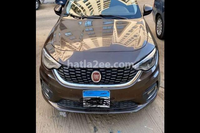 Tipo Fiat Brown