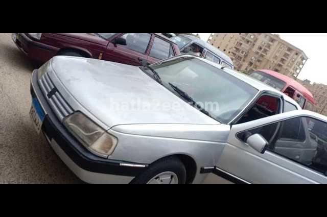 405 Peugeot Silver