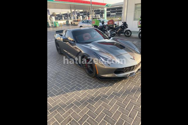 Corvette Chevrolet Gray