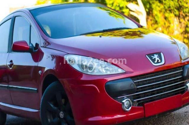 307 Peugeot Red