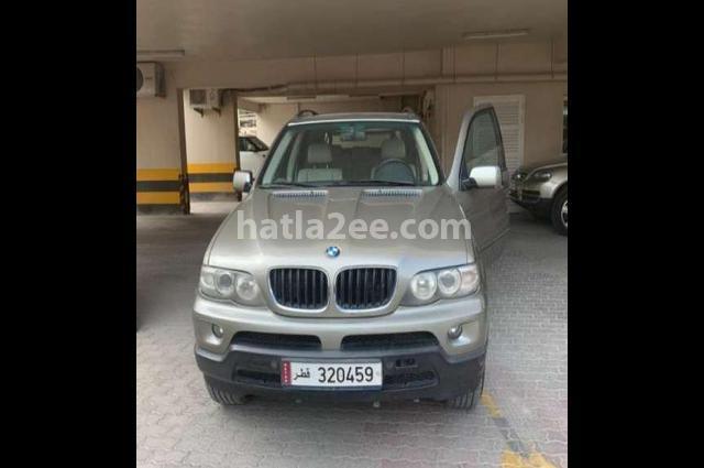 X5 BMW Gray