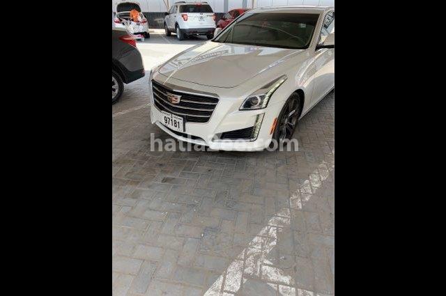 ATS Cadillac أبيض